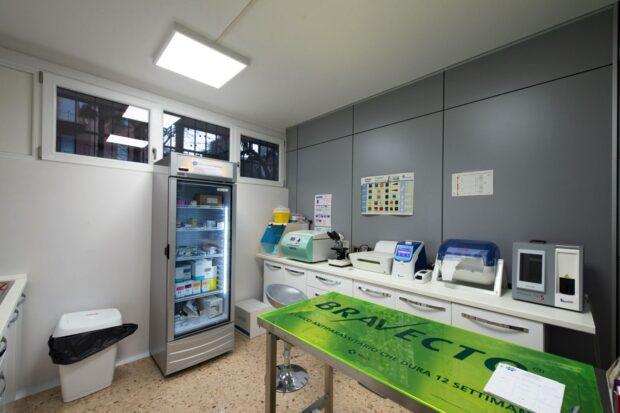 Belviglieri Clinica Veterinaria